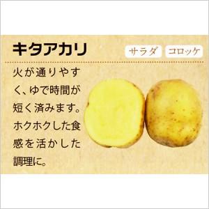北海道十勝産 キタアカリ5kg
