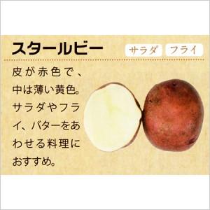 北海道十勝産 スタールビー5kgの写真2